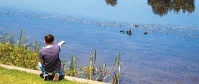 Lakeside Recreation Reserve Pakenham